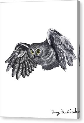 Canvas Print featuring the drawing Saw-whet Owl by Terry Frederick