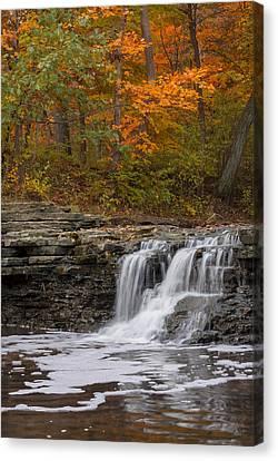 Sawmill Creek 2 Canvas Print by Larry Bohlin
