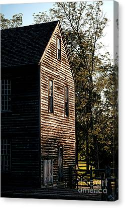 Sawmill Sunlight  Canvas Print by Olivier Le Queinec