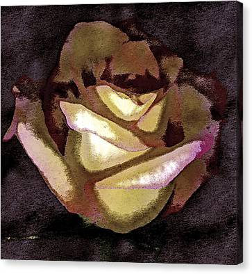 Scanned Rose Water Color Digital Photogram Canvas Print by Paul Shefferly