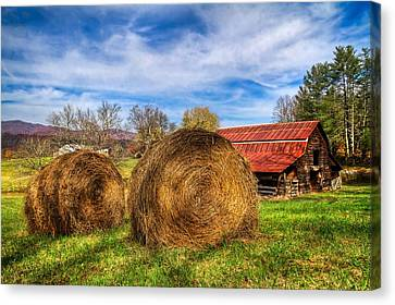 Scarecrow's Dream Canvas Print by Debra and Dave Vanderlaan
