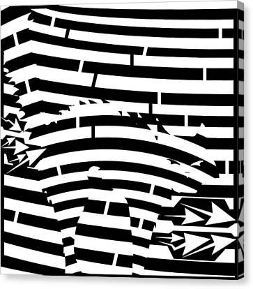 Scared Kitty Maze Canvas Print by Yonatan Frimer Maze Artist