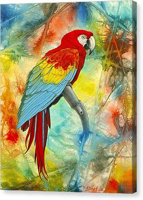 Scarlet Macaw In Abstract Canvas Print by Paul Krapf