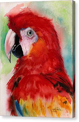Scarlet Macaw Canvas Print by Isabel Salvador