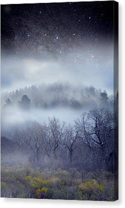 Scary Trees Canvas Print by Ric Soulen