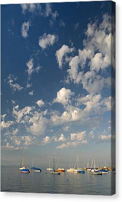 Scattered # 3 Canvas Print by Holger Spiering