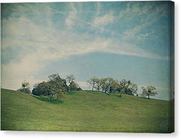 Scattered Along The Hilltop Canvas Print by Laurie Search