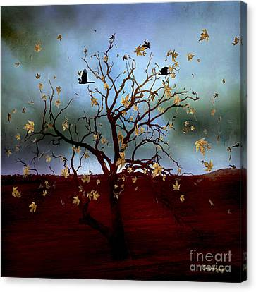 Canvas Print featuring the photograph Scattered Thoughts by Chris Armytage