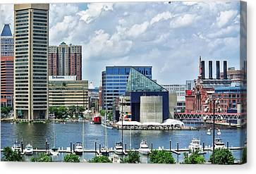 Scene From Federal Hill In June Canvas Print by Toni Martsoukos