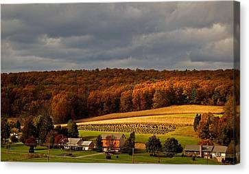 Scenic Autumn Canvas Print by Elsa Marie Santoro