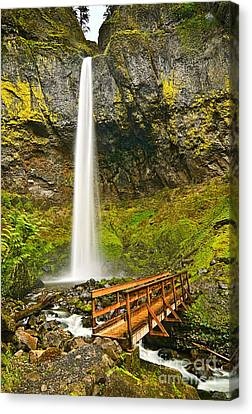Green Lichen Canvas Print - Scenic Elowah Falls In The Columbia River Gorge In Oregon by Jamie Pham