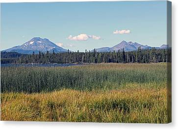 Scenic Canvas Print by Kami McKeon