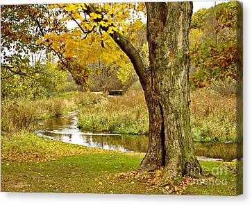 Color Me Trout Canvas Print - Scenic Michigan by Gary Richards