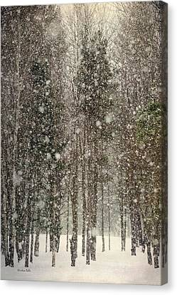 Scenic Snowfall Canvas Print by Christina Rollo