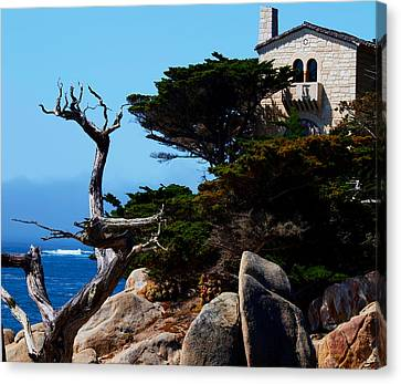Scenic View Canvas Print by Camille Lopez