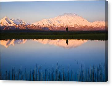 Scenic View Of Mt. Mckinley Reflected Canvas Print by Michael DeYoung