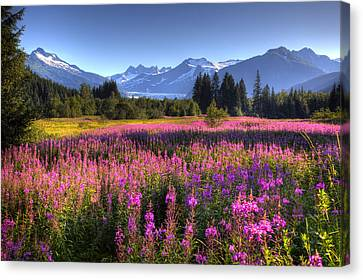 Scenic View Of The Mendenhall Glacier Canvas Print by Michael Criss