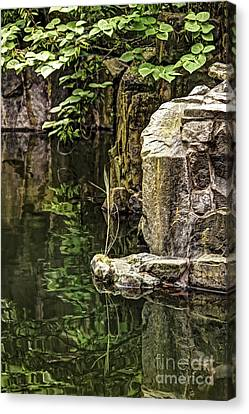 Canvas Print featuring the photograph Scholar Garden Reflections by Vicki DeVico