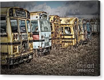 School Buses Canvas Print