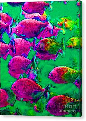 School Of Piranha V2 Canvas Print by Wingsdomain Art and Photography