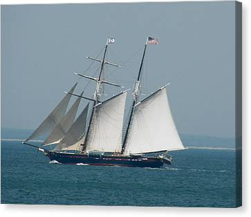 Schooner At Sail Canvas Print