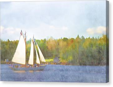 Schooner Castine Harbor Maine Canvas Print by Carol Leigh