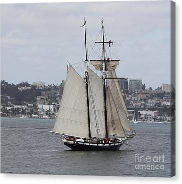 Schooner Heading Out To The Ocean Canvas Print
