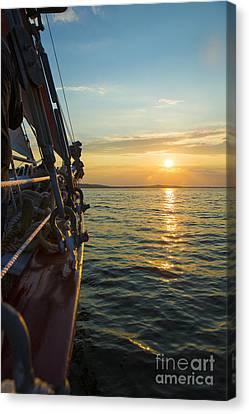 Schooner Sunset Canvas Print by Diane Diederich