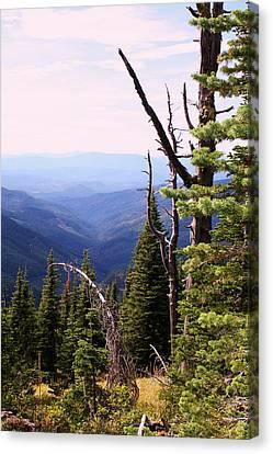 Schweitzer Mountain 1 Canvas Print