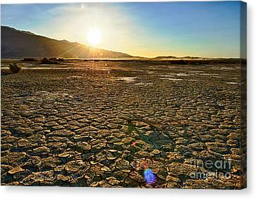Scorched Earth - Clark Dry Lake Located In Anza Borrego Desert State Park In California. Canvas Print by Jamie Pham