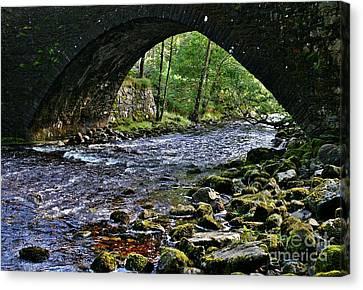Scotland Bridge Canvas Print by Henry Kowalski