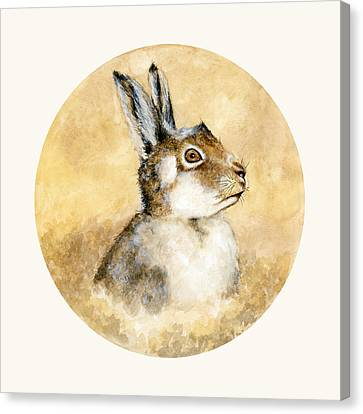 Scottish Hare Canvas Print by Nathalie Amber