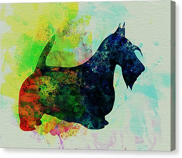 Scottish Dog Canvas Print - Scottish Terrier Watercolor by Naxart Studio