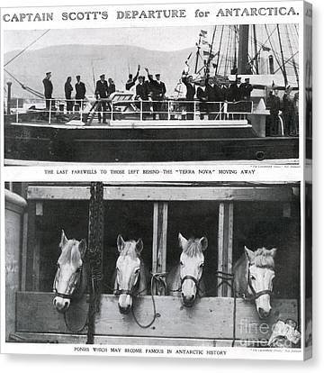 Scotts Departure For Antarctica Ponies Canvas Print by Mary Evans