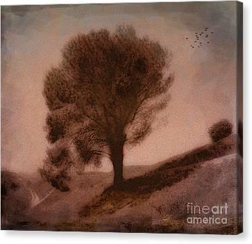 Screaming Tree Canvas Print by Bedros Awak