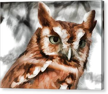 Canvas Print featuring the photograph Screech Owl Photo Art by Constantine Gregory
