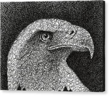 Raptor Canvas Print - Scribble Eagle by Nathan Shegrud