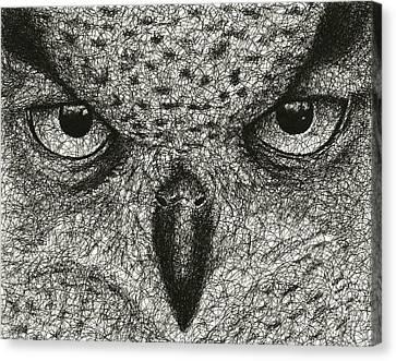 Scribble Owl Canvas Print by Nathan Shegrud
