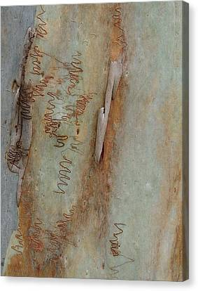Scribbled Abstract Canvas Print