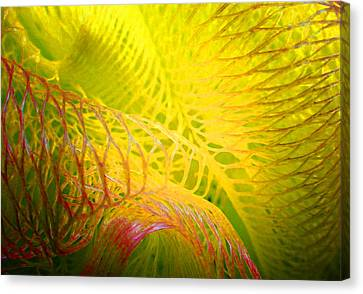 Galaxy E Canvas Print
