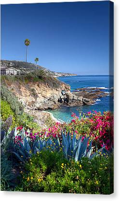 Sea Arch At Montage Resort Canvas Print