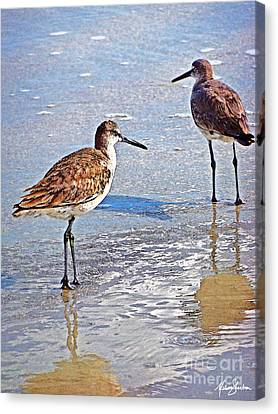Canvas Print featuring the photograph Sea Birds No.4 by Melissa Sherbon