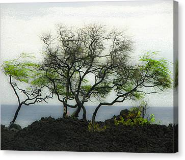 Canvas Print featuring the photograph Sea Breeze 2 by Jim Snyder