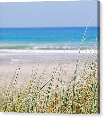 Canvas Print featuring the photograph Sea Breeze by Jocelyn Friis