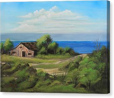 Sea Breeze Canvas Print by Remegio Onia
