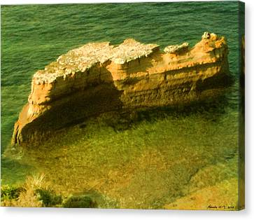 Canvas Print featuring the photograph Sea Cliffs by Amanda Holmes Tzafrir