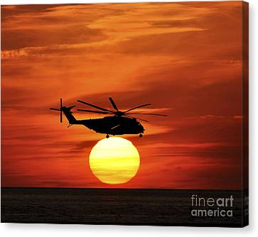 Sea Dragon Sunset Canvas Print by Al Powell Photography USA
