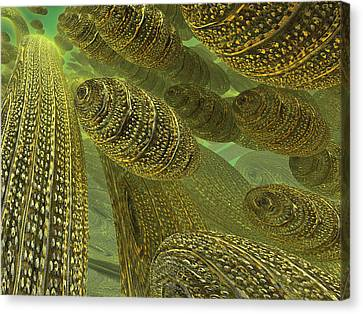 Canvas Print featuring the digital art Sea Eggs by Melissa Messick