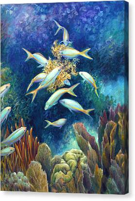 Sea Food Chain - Feeding Frenzy Canvas Print by Nancy Tilles