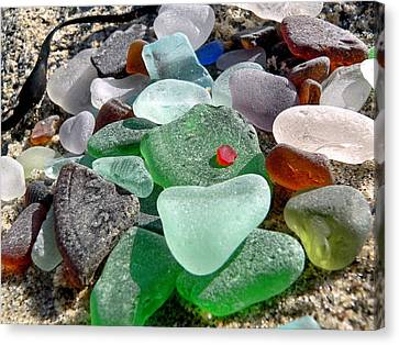 Sea Glass In Multicolors Canvas Print by Janice Drew